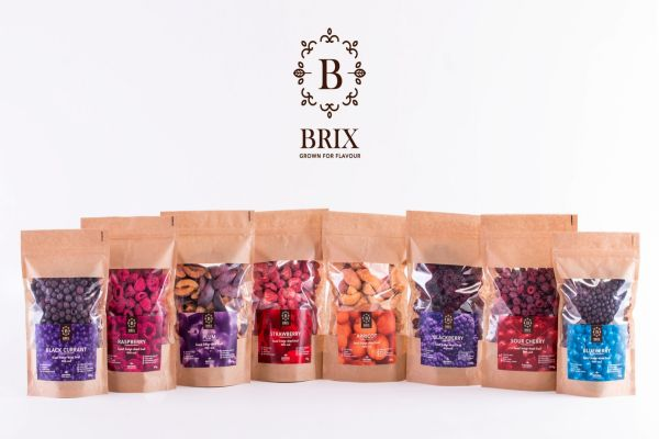 brix products 1